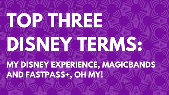 Top Three Disney Terms:  My Disney Experience, MagicBands, and FastPass+, OH MY!