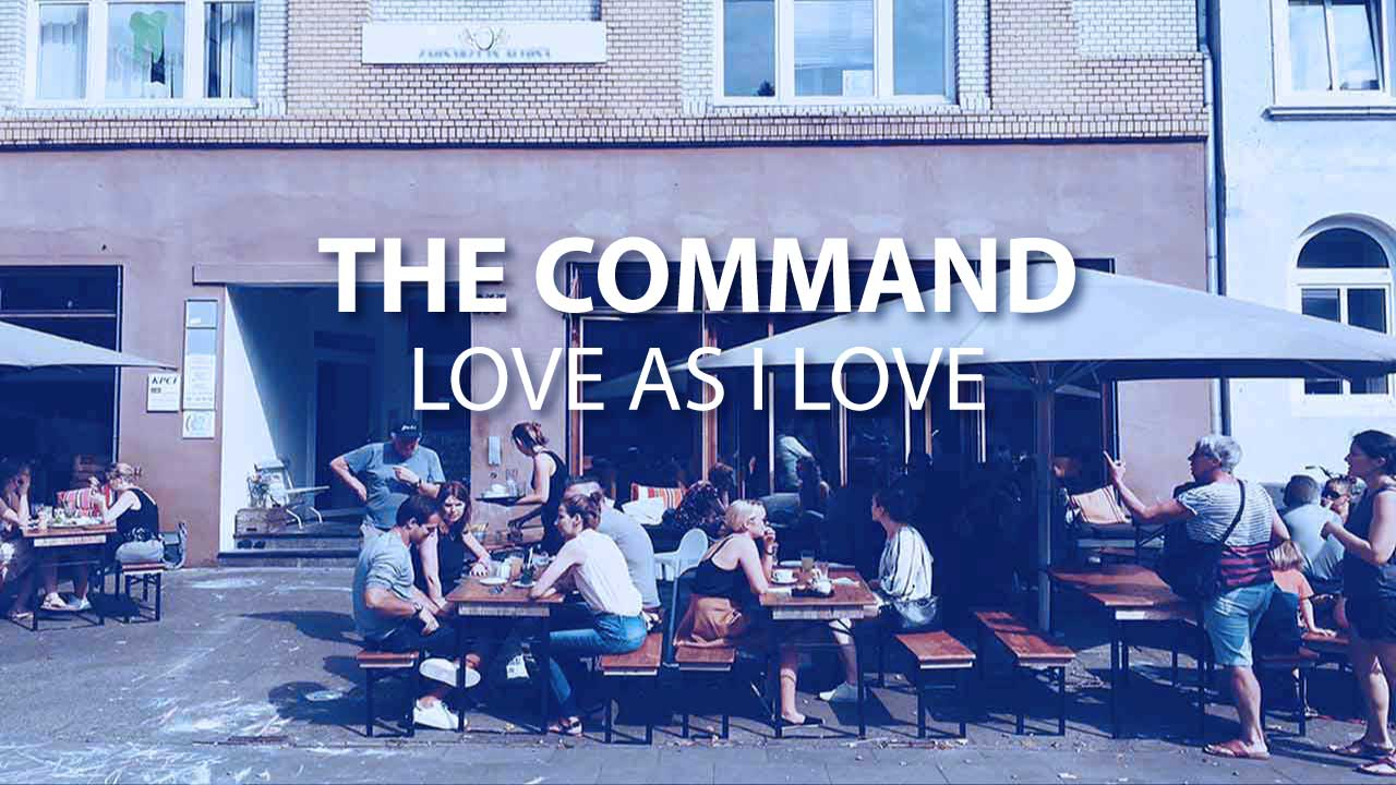 The Command - Love Life University