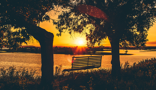Mindfulness Retreats