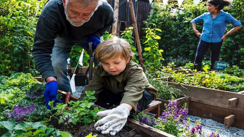 Body-Mechanics-While-Gardening