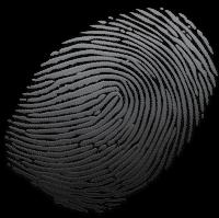 Live Scan Fingerprints
