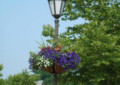 Flowering Lamppost Basket Project