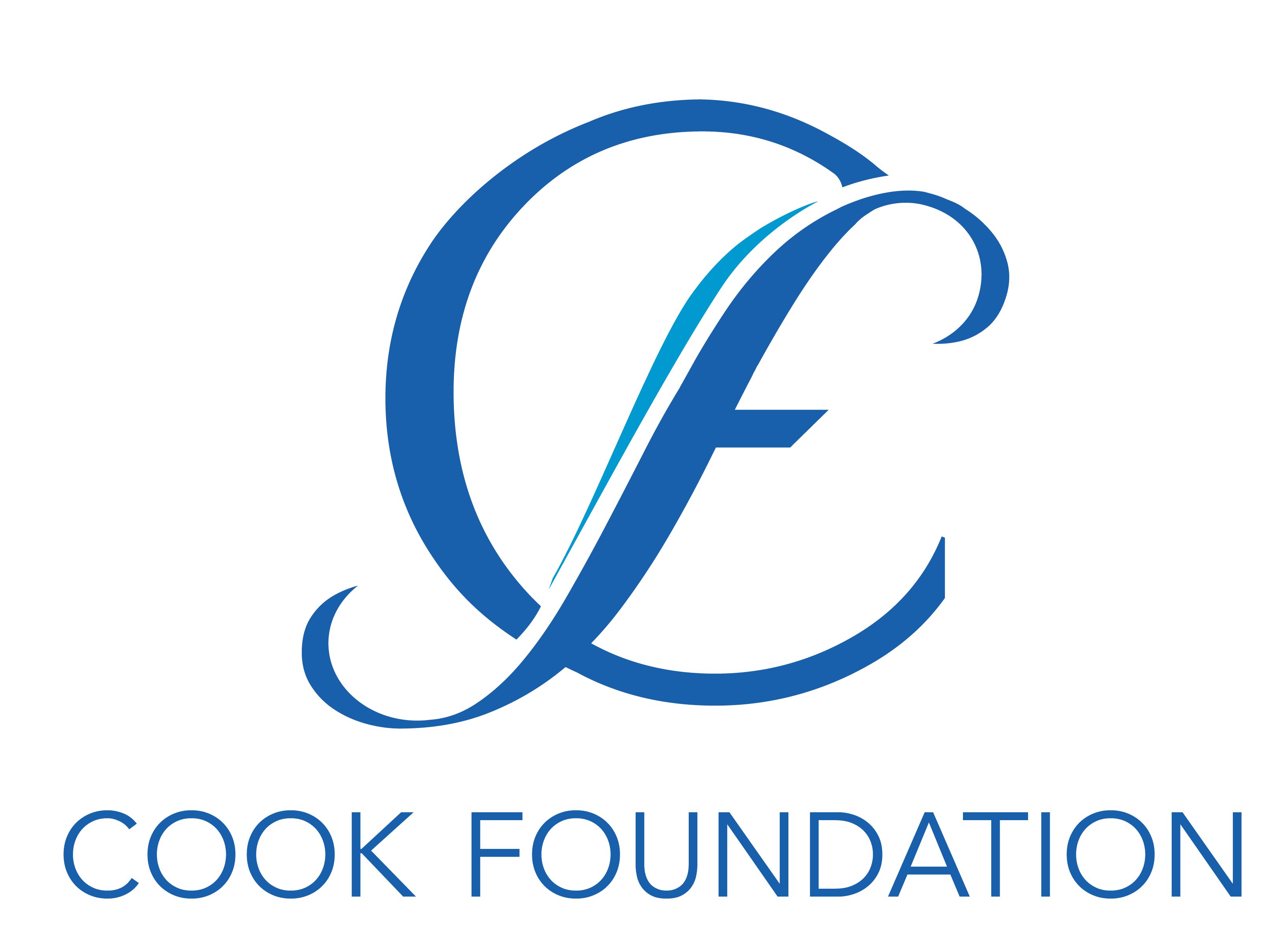 The Cook Foundation