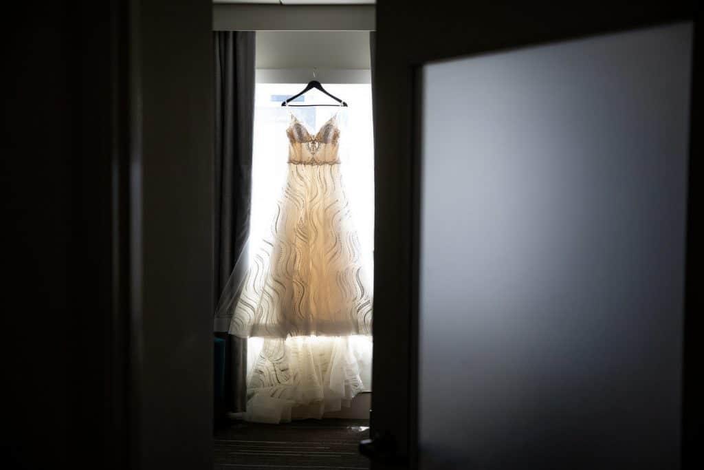 Liz Gown on Hanger