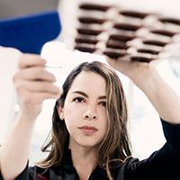 Melissa Coppel Chocolatier