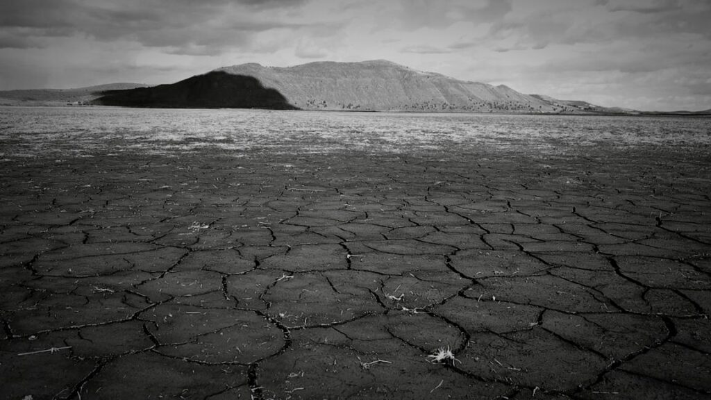 Cracked ground on Lower Klamath Lake