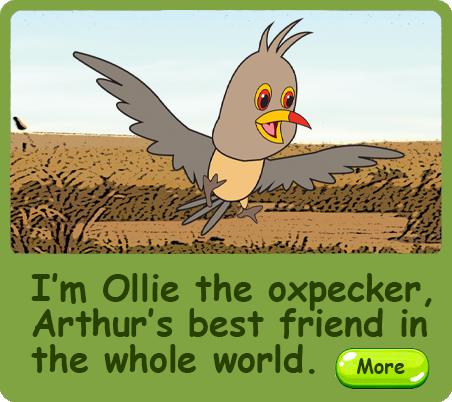 RhinoKIDZ - Ollie the Oxpecker