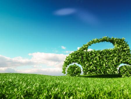 THE GREENER FUTURE OF CAR EXPORT?