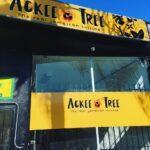 Ackee Tree Jamaican Cuisine