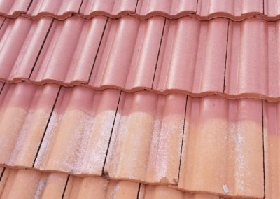terra cotta tile pressure washed, fungicide applied and painted & sealed