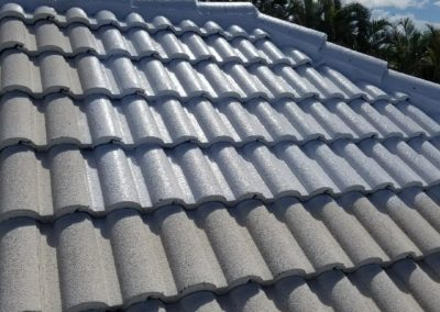 roof tile fungicide aceperformanceplus.com