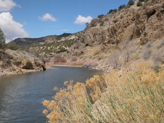 Stark Beauty of the Arkansas River