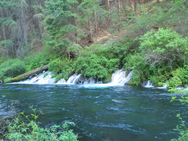 Huge Spring Enters Metolius River .5 Mile from Campground