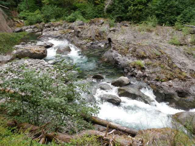 Salmon Cascade on the Sol Duc River