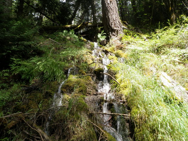 A Small Waterfall Above the Trail
