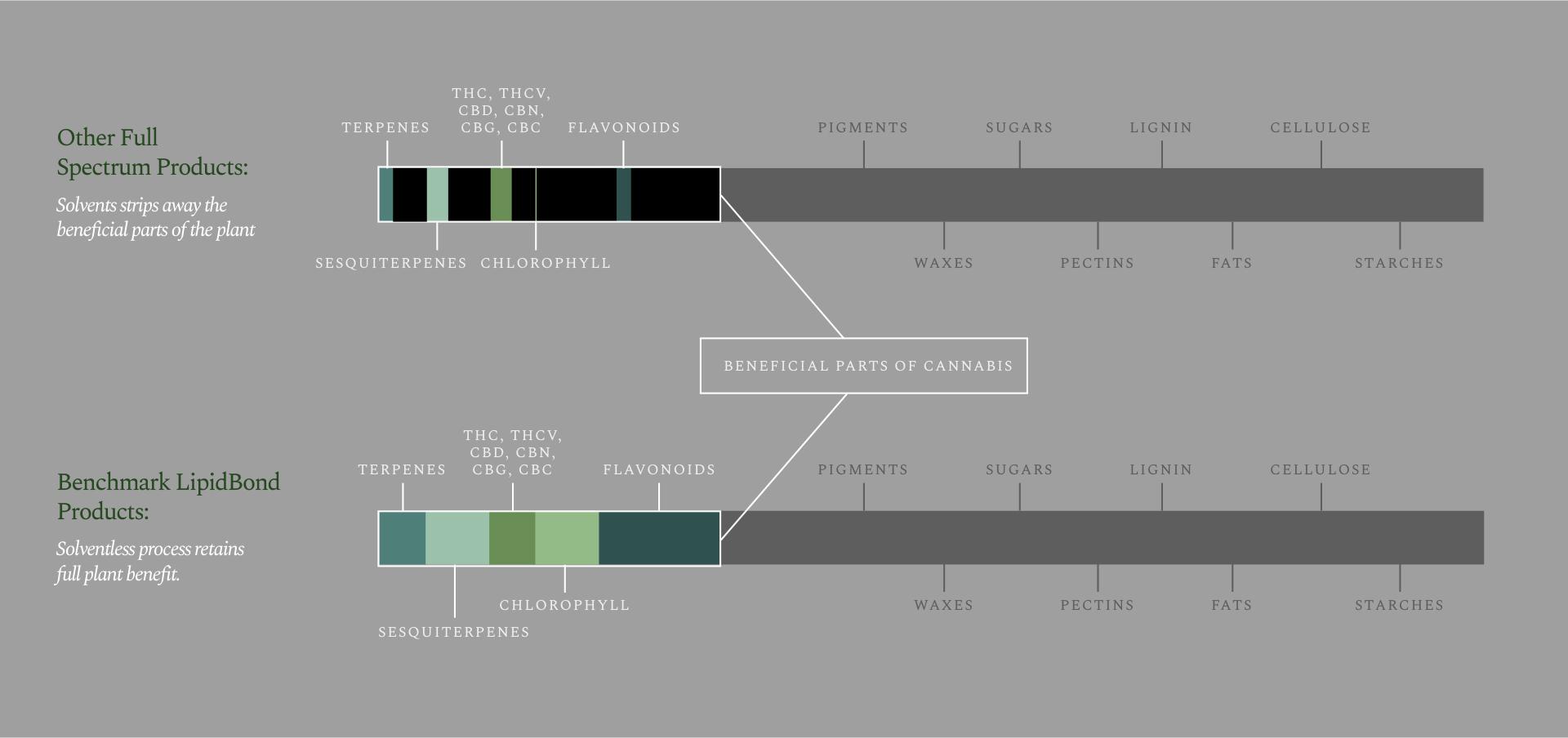 Bar chart - Benchmark