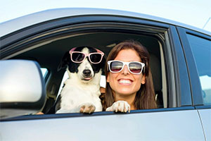 Dog and owner in sunglasses