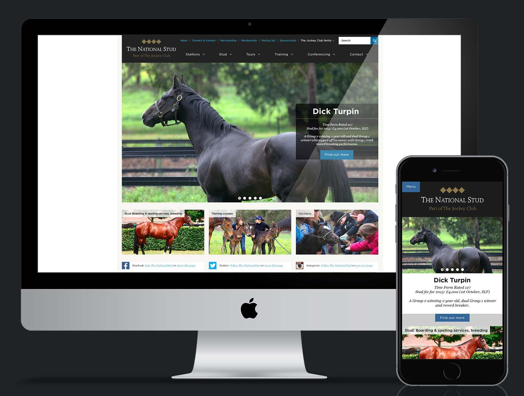 Jockey Club - National Stud Website Redesign