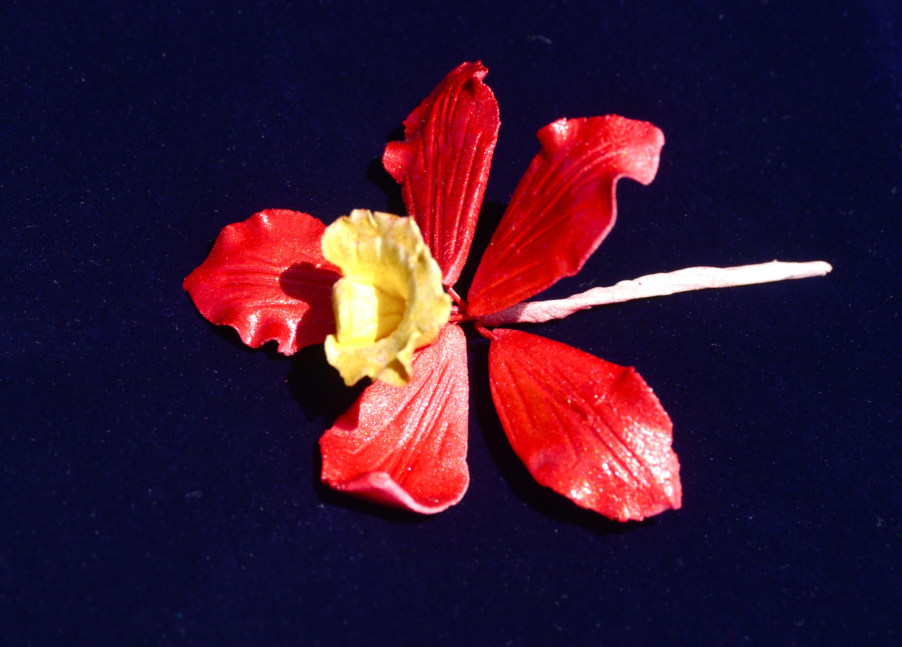 Natural Red & Yellow Shine