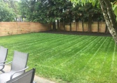 Landscape and garden maintenance