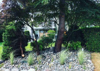 Rock gardening company Vancouver