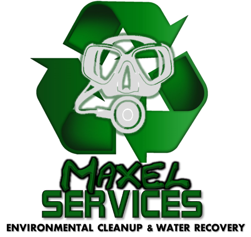 Maxel Services