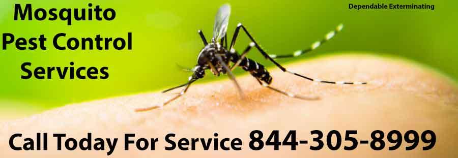 Mosquito Exterminator