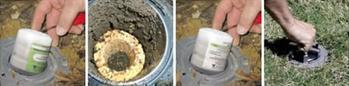 Termite Bait Station Installation