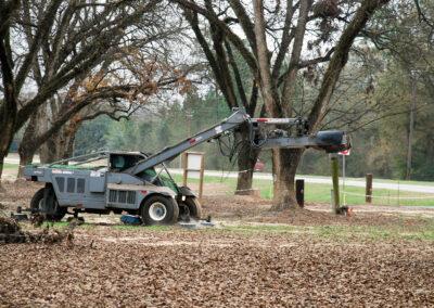 Pecan harvesting machine