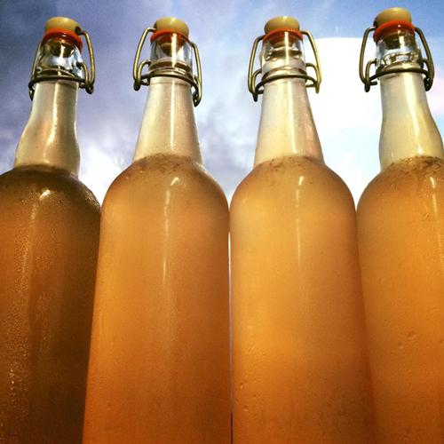 Barley Sprout Honey Lavender Lemonaid