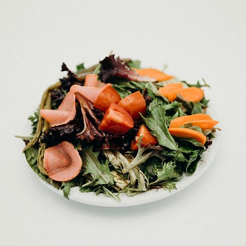 Barley Sprout_Green Salad