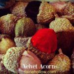 Velvet Acorns