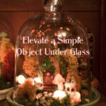 Elevate a Simple Object Under Glass