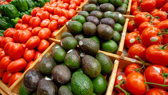 fresh tomatoes and avocados