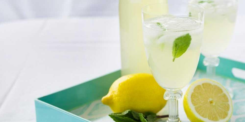 lemon mint fusion
