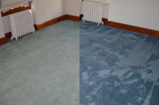 Can You Dye Carpet >> Carpet Dyeing And Rug Restoration Courses By Colorful Carpets