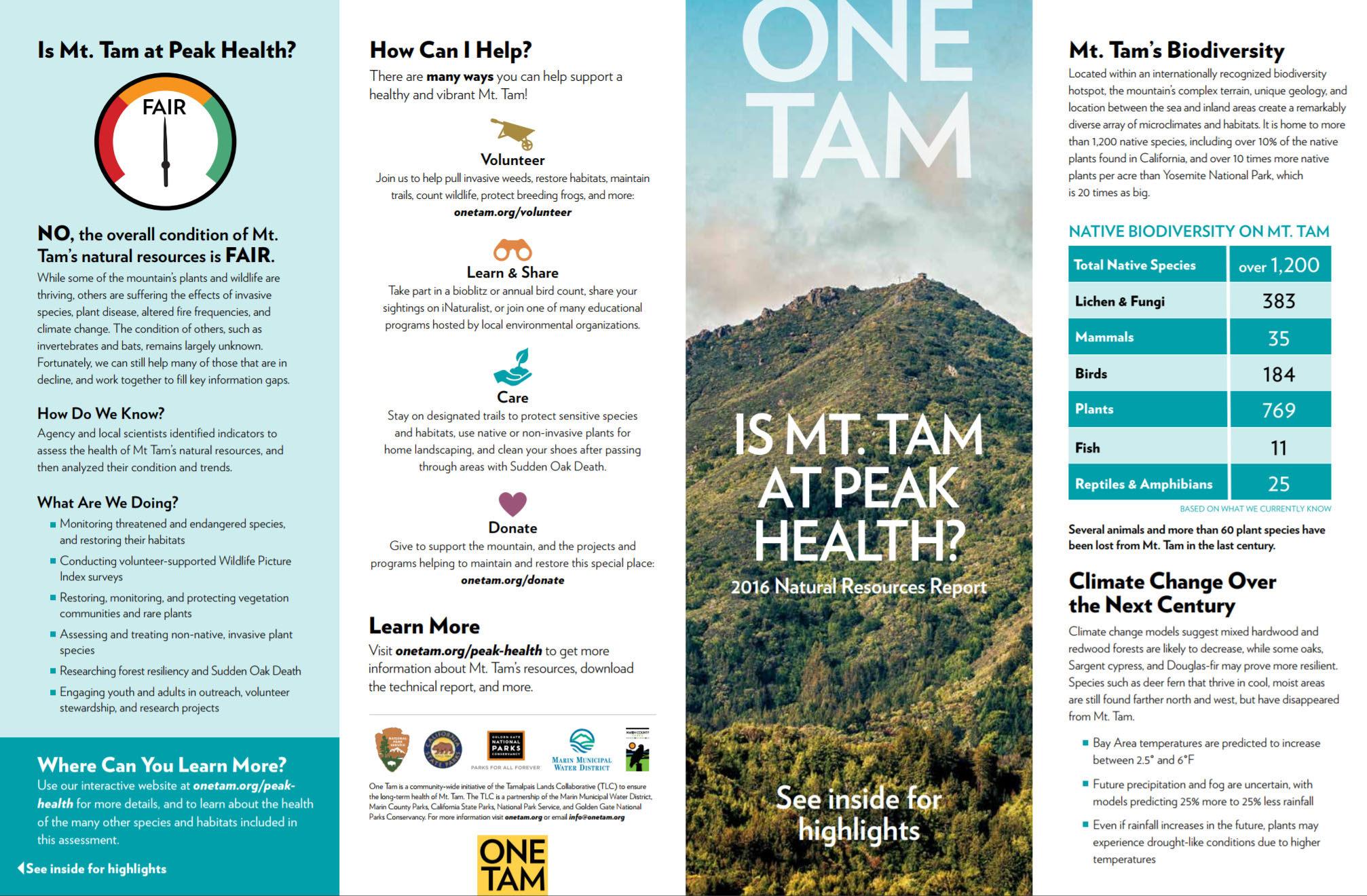 'Is Mt. Tam at Peak Health' brochure screenshot