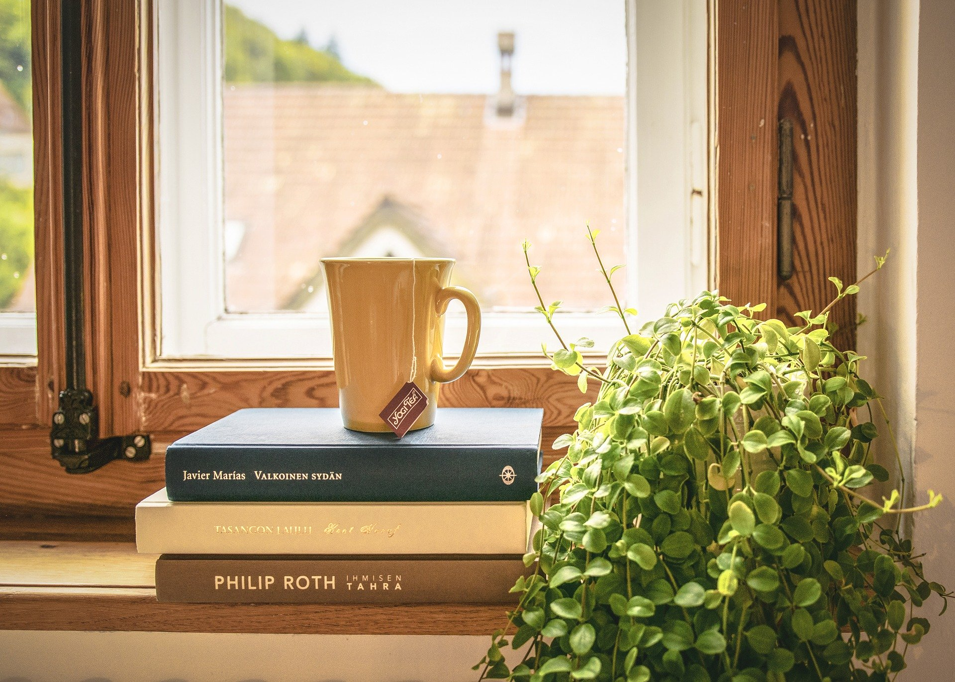 book tea and plant in window