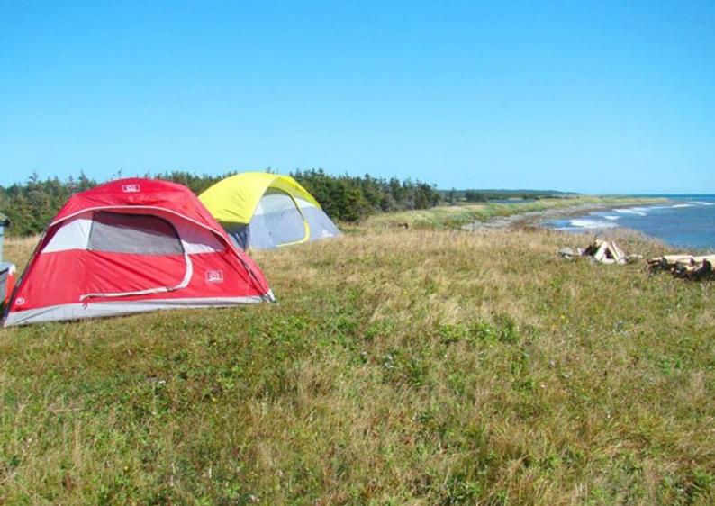 Fleur de Lis and Marconi Trail Road Trip featured image