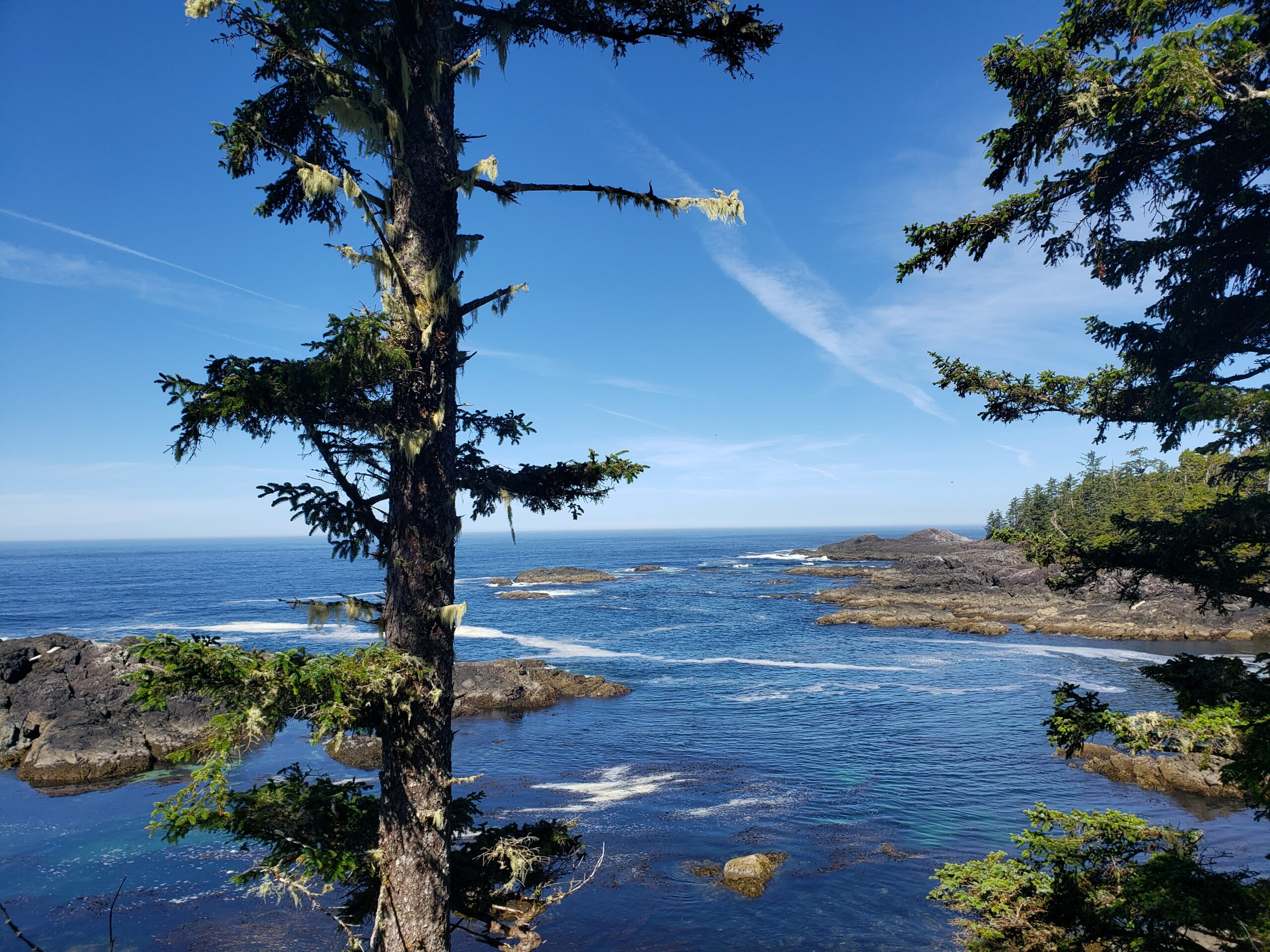 vancouver island road trip beach picture