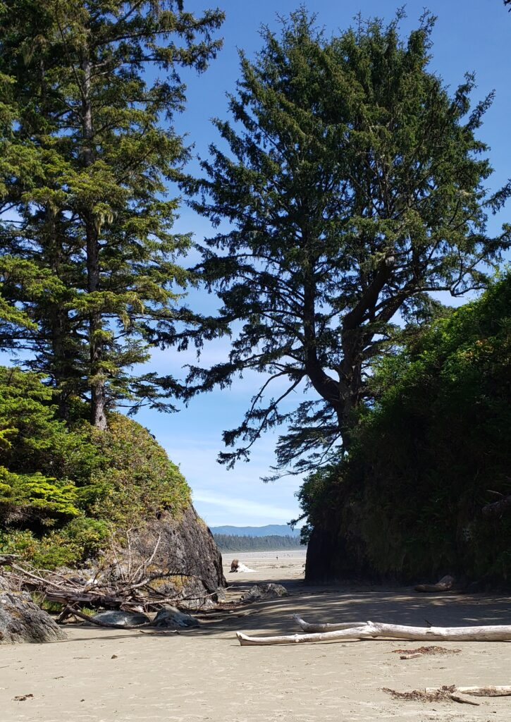 long beach in pacific rim national park reserve on vancouver island, bc