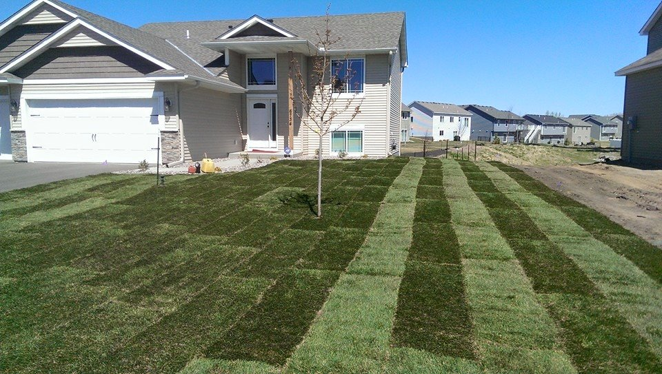 new sod installed on residential property