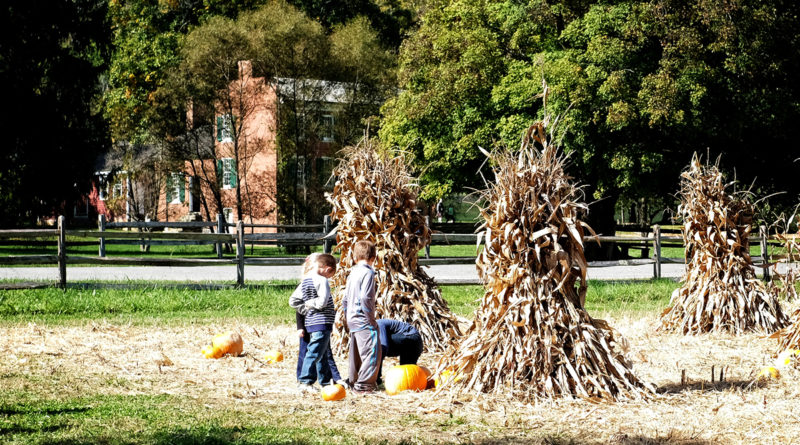 Experience the Autumn Season Past and Present during Harvest Festival
