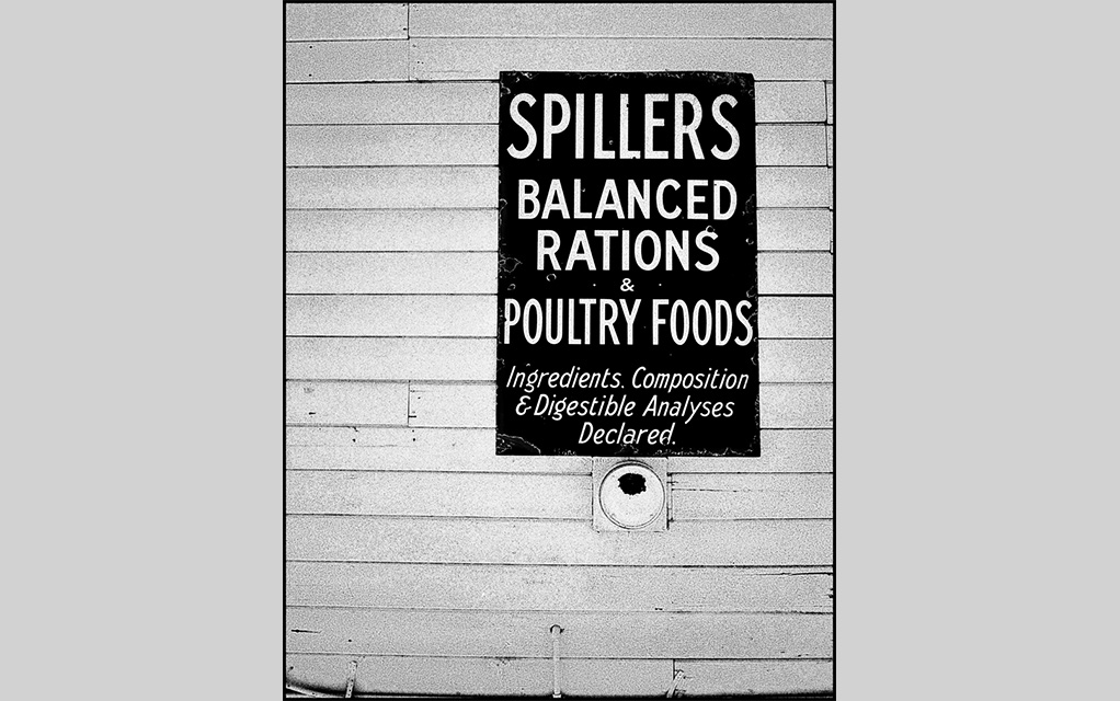 Spillers Balanced Rations, Julian CA