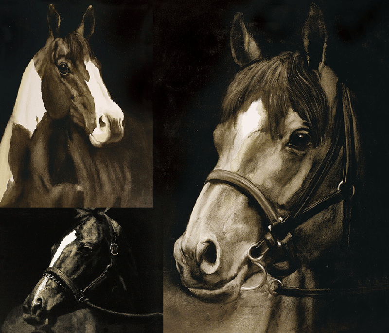 collage-horses-1