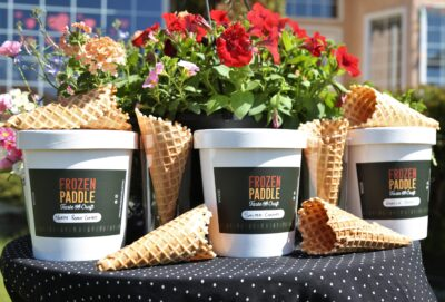 Frozen Paddle 2L Tubs Family