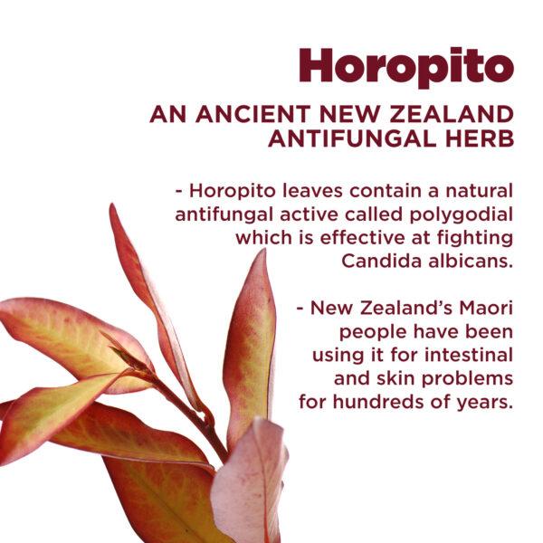 Kolorex Intimate Wash Horopito features