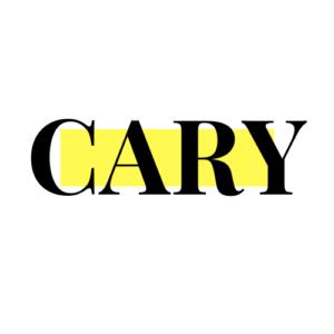 cary leibowitz seo