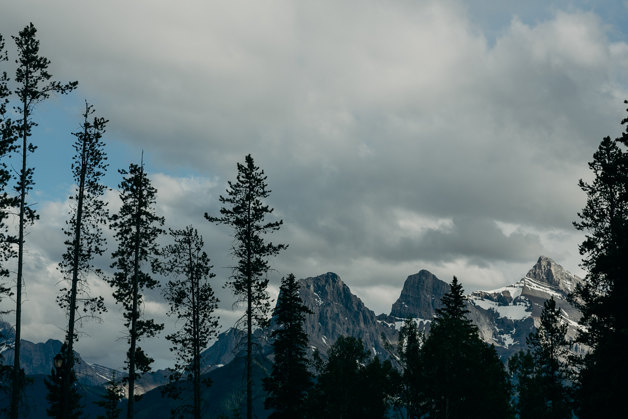 Photo of mountains trees and sky at Silvertip Resort in Canmore AB