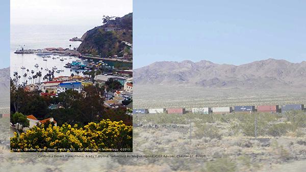 California desert train photo by Brady T Wynne copyright 2020, Avalon, Catalina Island. photo by Patricia Gill copyright 2016